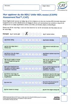 CAT frågeformular